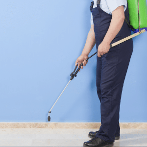 Pest Control Services Redlands